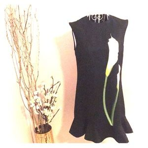 XS Victoria Beckham Lily Black Drop Waist Dress